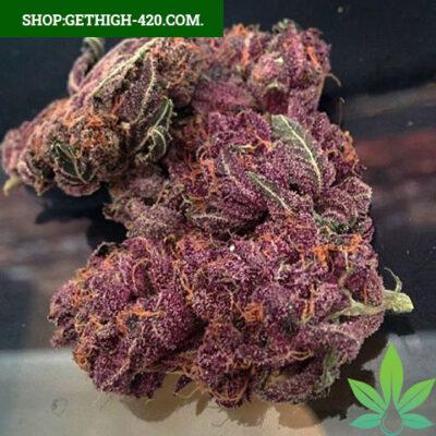 Buy Purple Kush