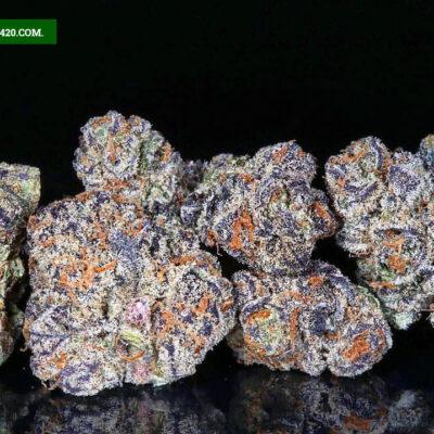 gushers weed strain